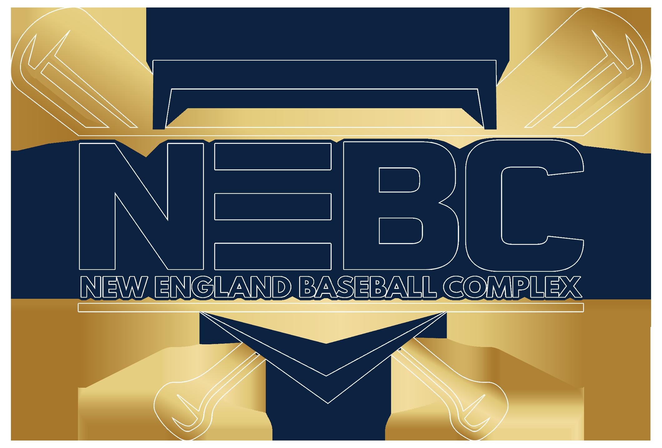 NEBC 2021 stroke